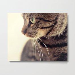 Kitty Love 2 Metal Print