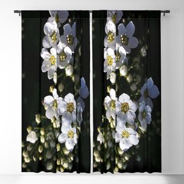 White apple blossom Blackout Curtain