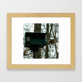 Seat Taken? Framed Art Print
