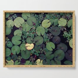 Lily Pads Serving Tray