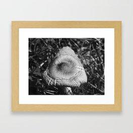 Mushroom Gloom Framed Art Print