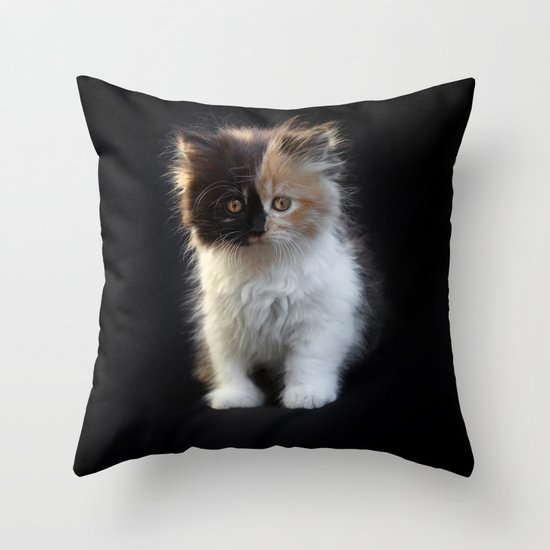 Cutest Kitten Ever Throw Pillow