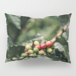 Coffee Cherries Hawaii Pillow Sham