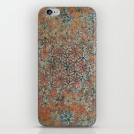 TAGGART SPRING TRANSFORMATION iPhone Skin