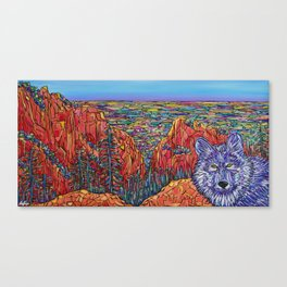 Wolf Wandering Mt Muscoco, Colorado USA Canvas Print