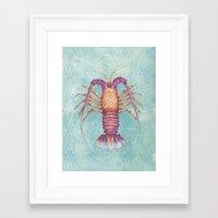 lobster Framed Art Prints featuring lobster by Marcela Siegert