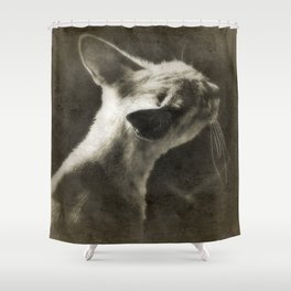 Where is the Mouse ? Gerald Robin © Shower Curtain
