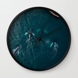 School of humpback whales playing with a boat Wall Clock