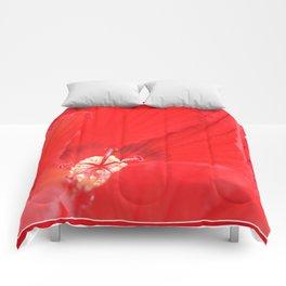 Red Hibiscus | Flower | Flowers | Nadia Bonello | Canada Comforters
