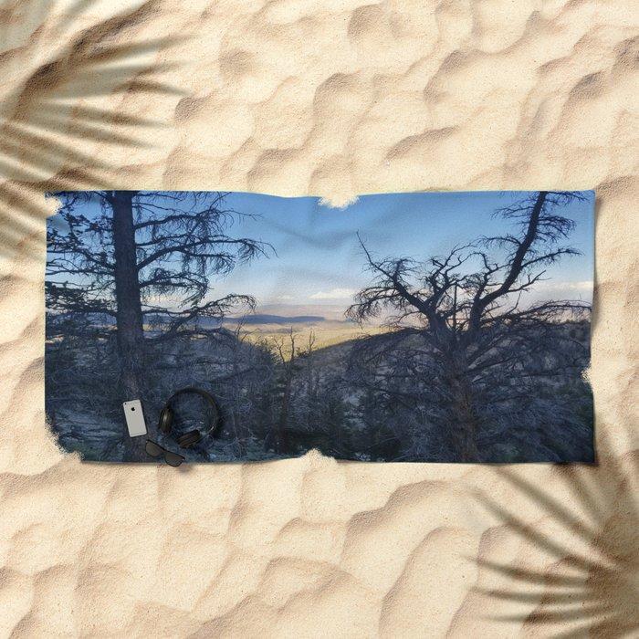 Ancient Bristlecone Pine Forest #1 Beach Towel