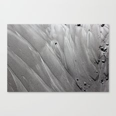 Silver Sands Canvas Print