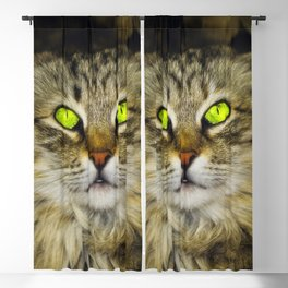Cat with Green Eyes Blackout Curtain