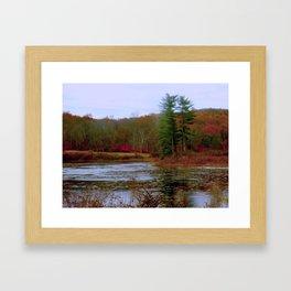 Evergreen Pond Framed Art Print