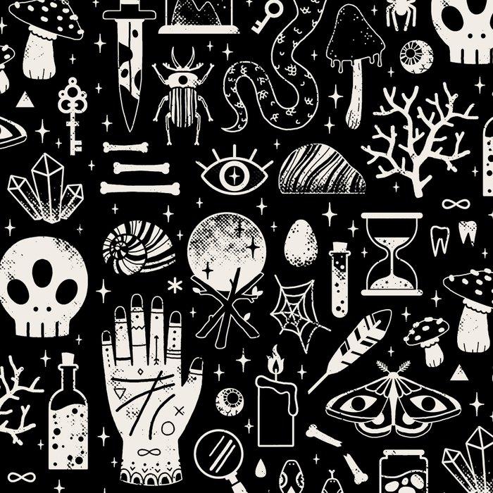 Curiosities: Bone Black Leggings