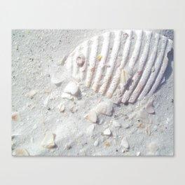 Shelly Canvas Print
