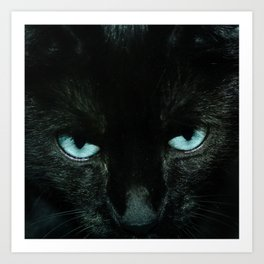 Black Cat in Turquoise - My Familiar Art Print