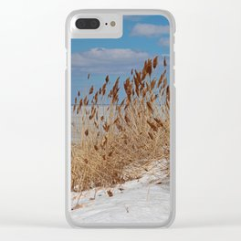 Tame a Wild Wind II (vertical) Clear iPhone Case