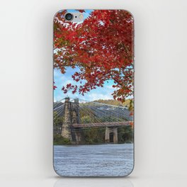 Perfectly Framed iPhone Skin