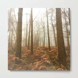 enchanted forest, surrey 7792 Metal Print