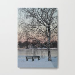 Birch and Bench in Snow Metal Print