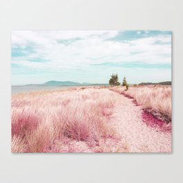 Coastal trail - blush Canvas Print