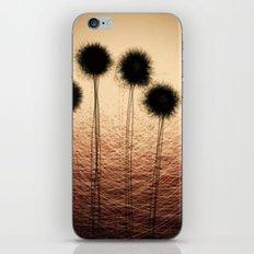 datadoodle 008 iPhone & iPod Skin