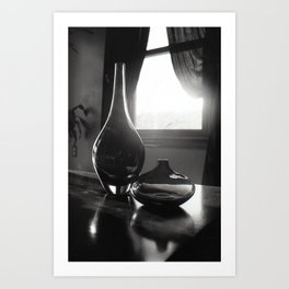 Twin Vases Art Print