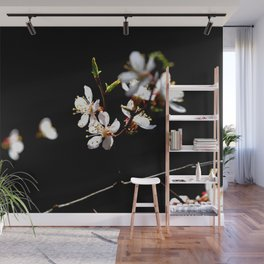 Small Twig Of A Japanese Apricot Tree. White Sunlit Flowers. Black Background Wall Mural