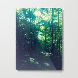 A Shadowed Path Metal Print