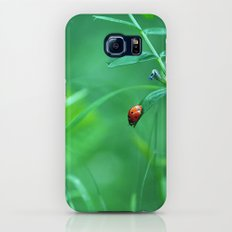 Ladybug Slim Case Galaxy S6