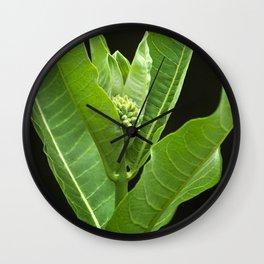 Green Milkweed Abstract Wall Clock