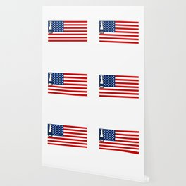4th of July Beer Drinking Party Flag For Men Women Wallpaper