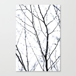 Winter Silhouettes 3 Canvas Print