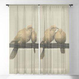 loving doves Sheer Curtain