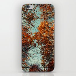 just have a look ... up up to the sky iPhone Skin