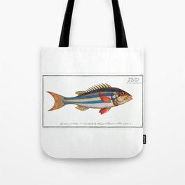 Blue-striped Gilt-head (Sparus vittatus) Illustrated Fish Chart from Ichtylogie, ou Histoire naturelle Tote Bag