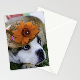 English Bulldog Puppy Wearing a Straw Hat with Bright Orange Flower for Spring Stationery Cards