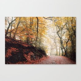 Path through the Autumn Forest Canvas Print