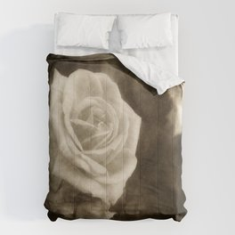 Pink Roses in Anzures 1 Antiqued Comforters
