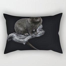 Noisy Rectangular Pillow