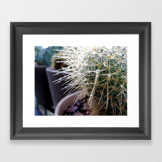 Martha the Cactus  Framed Art Print