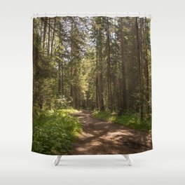 Path to the pine forest Shower Curtain