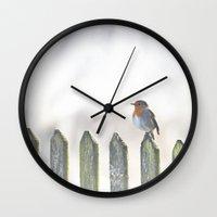 robin Wall Clocks featuring Robin by SUNLIGHT STUDIOS  Monika Strigel