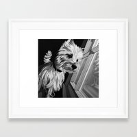 westie Framed Art Prints featuring Westie by mothermary