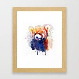 Red Panda Portrait Framed Art Print
