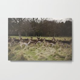 And for one second... Metal Print