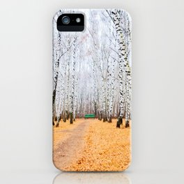 Green Bench And Fallen Leaves. Late Autumn In The Birch Grove iPhone Case