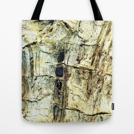 Journey to the Fossil Beds Tote Bag