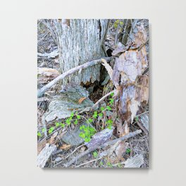 Wood Elemental Reaching out to Heal Metal Print