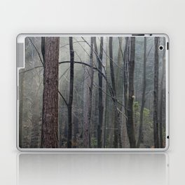Magical winter light Laptop & iPad Skin
